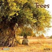 Bomen - Trees Kalender 2019