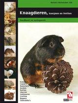 Boek cover Knaagdieren, konijnen en fretten - OD Kennis & Advies boek van A. Vermeulen-Slik