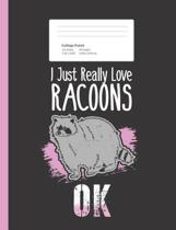 I Just Really Love Racoons OK
