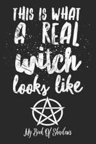 This Is What a Real Witch Looks Like My Book of Shadows