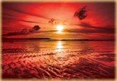 Fotobehang Zee, Zonsondergang | Rood | 312x219cm