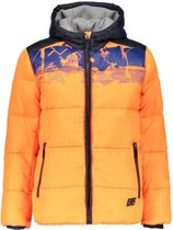 Bellaire Bluesb Hooded Jacket Graphic Artw. F