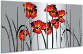 Glasschilderij Tulp | Oranje, Zwart, Grijs | 160x80cm 4Luik | Foto print op Glas |  F005613