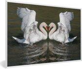 Foto in lijst - Een weerspiegelde foto van een trompetzwaan in de vorm van een hart fotolijst wit 60x40 cm - Poster in lijst (Wanddecoratie woonkamer / slaapkamer)
