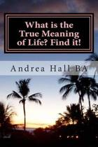 What Is the True Meaning of Life? Find It!