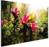 Prachtige tempel middenin de jungle Aluminium 60x40 cm - Foto print op Aluminium (metaal wanddecoratie)