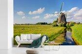 Fotobehang vinyl - Groene natuur bij de Molens van Kinderdijk in Europa breedte 390 cm x hoogte 260 cm - Foto print op behang (in 7 formaten beschikbaar)