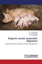 Organic Waste Anaerobic Digestion