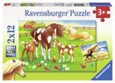 Ravensburger puzzel Wapperende manen 2 x 12 stukjes