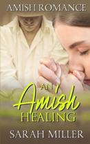 An Amish Healing