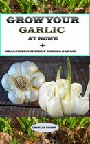 Grow your Garlic at Home + Health Benefits of Eating Garlic