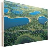 Foto vanuit lucht van de Pantanal in Zuid-Amerika Vurenhout met planken 60x40 cm - Foto print op Hout (Wanddecoratie)