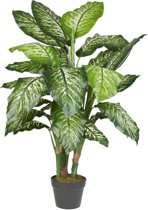 HTT Decorations – Kunstplant Dieffenbachia H120cm
