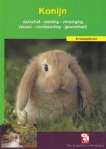 Over Dieren 146 - Het konijn