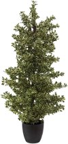 Europalms Houten ficus zilver blad, 120cm