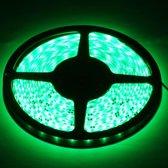 Epoxy Waterproof Rope Light, Lengte: 5 m, Groen Licht 3528 SMD LED, 60 LED / m