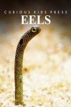 Eels - Curious Kids Press