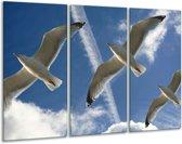 Canvas schilderij Vogels | Blauw, Zwart | 120x80cm 3Luik