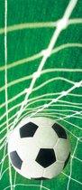 Goal  - Fotobehang 91 x 211 cm