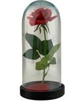 Roos in glazen stolp - levensechte roos - kunstbloem - d13xh26