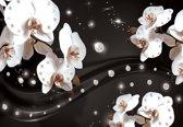 Fotobehang Flowers Orchids Pattern | M - 104cm x 70.5cm | 130g/m2 Vlies