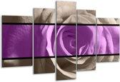 Glasschilderij Roos   Paars, Grijs, Zwart   170x100cm 5Luik   Foto print op Glas    F004469