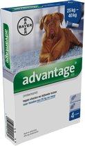 Bayer Advantage Hond 400 - Vanaf 25 kg - 4 Pipetten