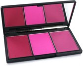 Sleek Make-up Blush by 3 Pink Sprint