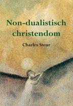 Non-dualistisch christendom