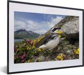 Foto in lijst - Een tapuit in het bergachtige landschap fotolijst zwart met witte passe-partout klein 40x30 cm - Poster in lijst (Wanddecoratie woonkamer / slaapkamer)