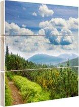 Een bospad in de bergen Hout 20x20 cm - Foto print op Hout (Wanddecoratie)
