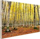 Gele bladeren in het bos in de herfst Hout 80x60 cm - Foto print op Hout (Wanddecoratie)