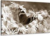 Schilderij | Canvas Schilderij Bloemen, Vlinder | Sepia, Bruin | 140x90cm 1Luik | Foto print op Canvas