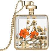 Fako Bijoux® - Ketting - Gedroogde Bloem - Vierkant - Goudkleurig - Oranje