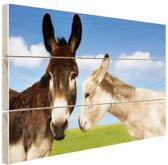 Ezels in het veld Hout 80x60 cm - Foto print op Hout (Wanddecoratie)