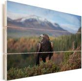 Steenarend zit tussen het struikgewas voor een bergketen Vurenhout met planken 60x40 cm - Foto print op Hout (Wanddecoratie)