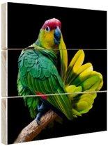 Papegaai afdruk Hout 120x80 cm - Foto print op Hout (Wanddecoratie)