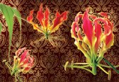 Fotobehang Flowers  | XXXL - 416cm x 254cm | 130g/m2 Vlies