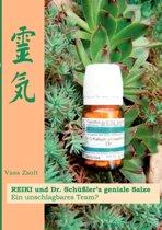 Reiki Und Dr. Schusslers Geniale Salze
