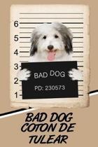 Bad Dog Coton de Tulear