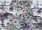 Komar Fotobehang Shades 368x254 cm 8-962