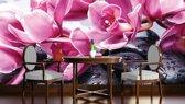 Fotobehang Bloemen | Roze | 312x219cm