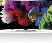 LG 55EC930V - 3D Oled-tv - 55 inch - Full HD - Smart tv