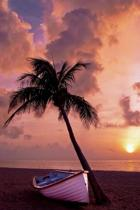 A Palm Tree, Boat, and a Pink Sunset at the Beach Vacation Journal