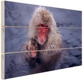 Sneeuwaap met jong Hout 120x80 cm - Foto print op Hout (Wanddecoratie)