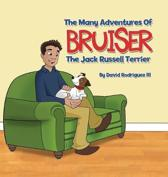 The Many Adventures of Bruiser The Jack Russell Terrier