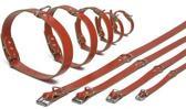 Ipts halsband - Rood 32x10