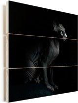 Portret van een zwarte Sphynx Vurenhout met planken 50x50 cm - Foto print op Hout (Wanddecoratie)