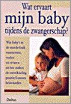 Wat Ervaart Mijn Baby Tijdens De Zwangerschap?