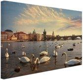 FotoCadeau.nl - Zwanen Karelsbrug Praag Canvas 60x40 cm - Foto print op Canvas schilderij (Wanddecoratie)